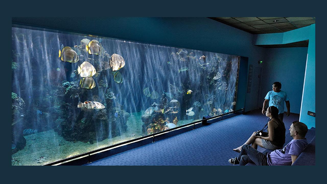 L'aquarium prend l'eau !