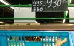 gingembre carrefour market Nouméa août 2015.jpg