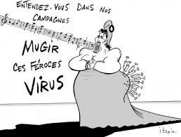images virus.jpeg