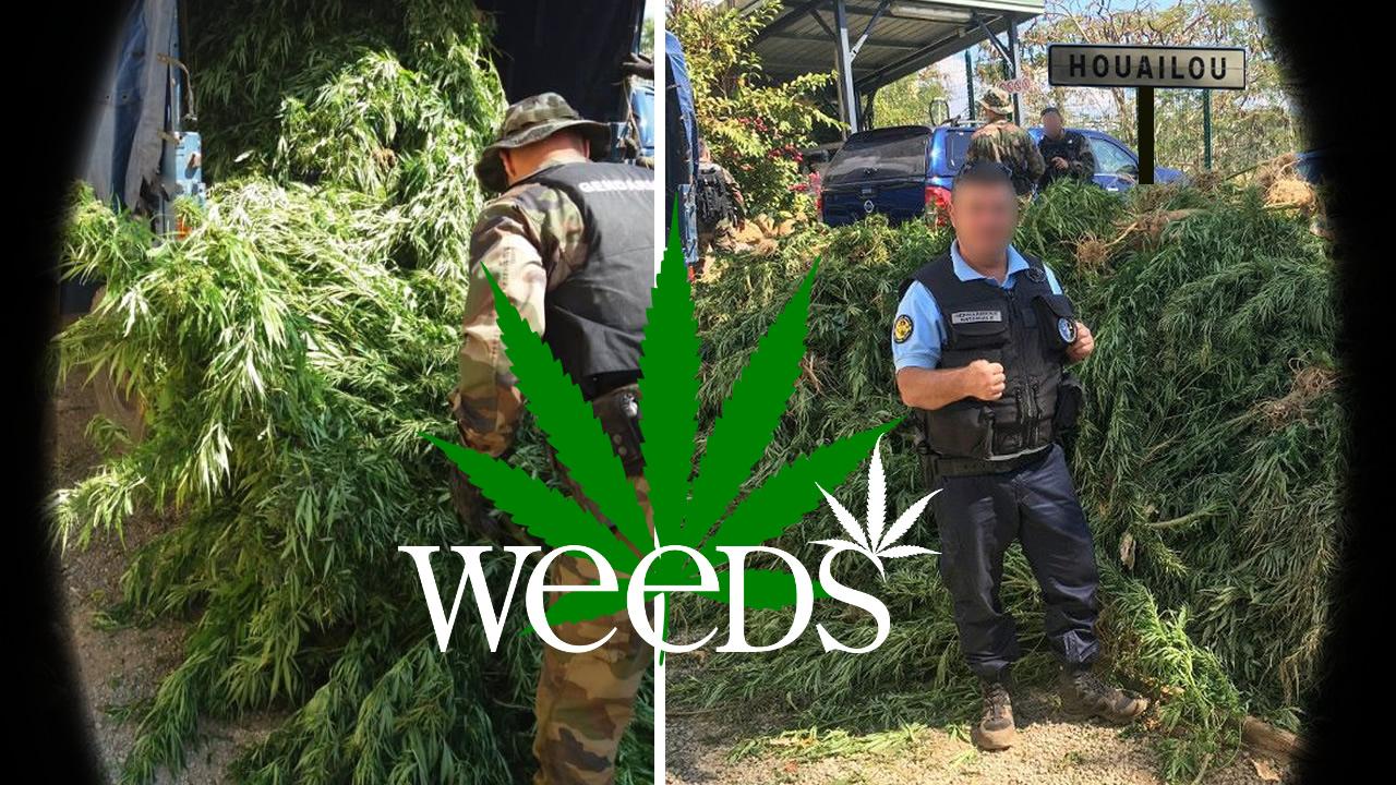 Cannabis Nouméa Houailou