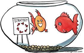 stratégie.jpeg