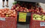fruits-s.jpg
