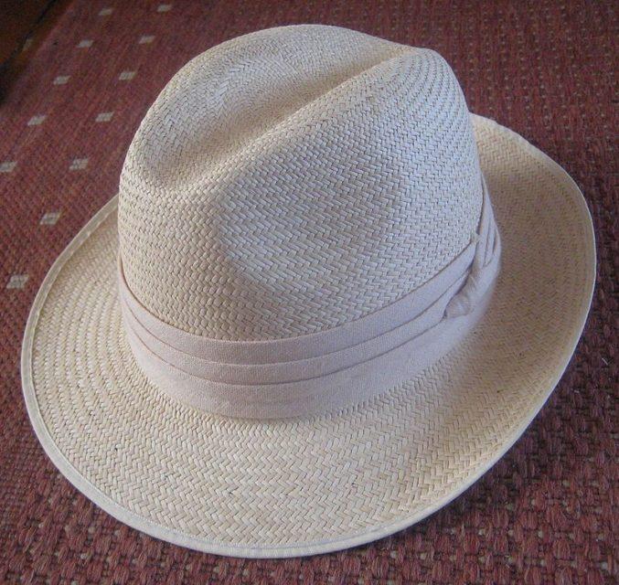 800px-Panama_hat.jpg